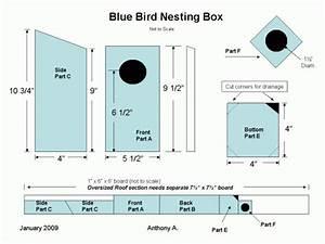 How to Build Simple Bluebird House Plans PDF Plans