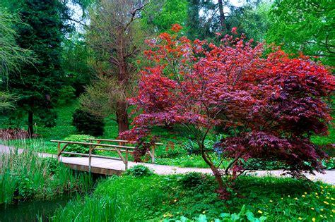 Alter Botanischer Garten Kiel Foto & Bild Landschaft