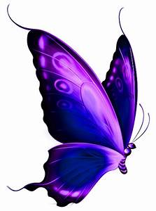 Purple Butterfly Clipart | Clipart Panda - Free Clipart Images