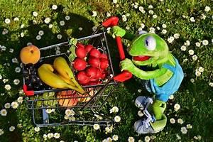 Lebensmittel Online Bestellen : lebensmittel online bestellen obst gem se fruchtp ~ Frokenaadalensverden.com Haus und Dekorationen