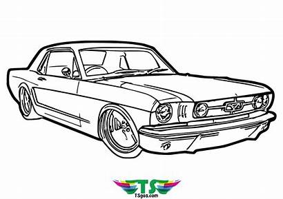 Muscle Coloring Tsgos Cars Adult