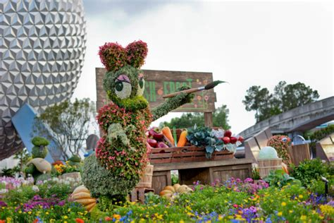 what are the dates for the 2017 flower garden and food