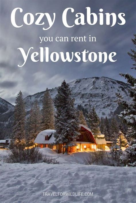 Yellowstone Cabin by Best 25 Yellowstone Cabins Ideas On