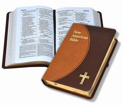 Bibles Presentation Gift Choices Catholic Pages Publishing