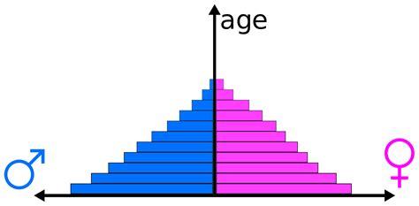 population pyramid wikipedia