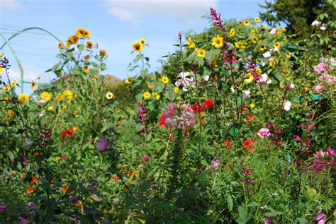 summer flower garden giverny monet s flower garden