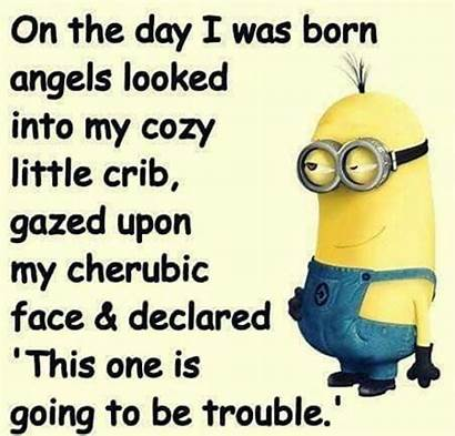 Funny Quotes Memes Short Minions Words Sayings