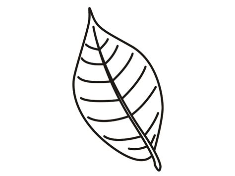 leaf coloring pages coloringsuitecom