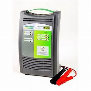 Chargeur De Batterie Feu Vert : chargeur de batterie feu vert ca 60 feu vert ~ Dailycaller-alerts.com Idées de Décoration