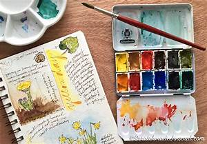 12 Color Watercolor Palette Scratchmade Journal