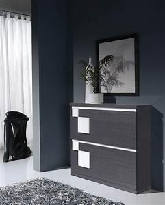 Meuble D Entrée Chaussures : meuble a chaussures contemporain toledo zd1 mac mod ~ Farleysfitness.com Idées de Décoration