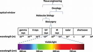 Electromagnetic Spectrum And Optical Windows In Different