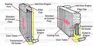 Best Radiators  Diagram Of A Radiator