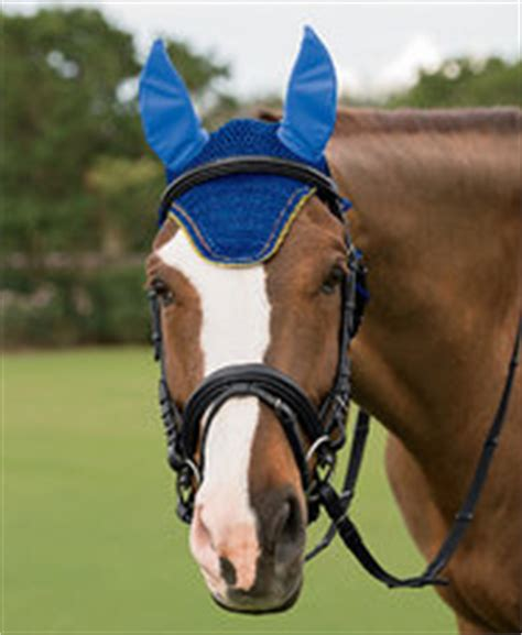 foto de Red White and Blue 4th of July Horse Tack