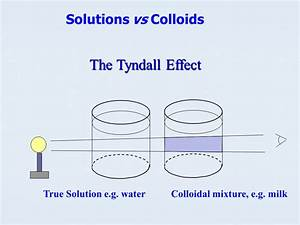 Solution Vs Colloids The Solution Or True Solution