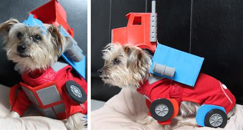 Tompkins Square Park Halloween Dog Parade 2015 by I Made My Dog Dress Up As Optimus Prime For Halloween