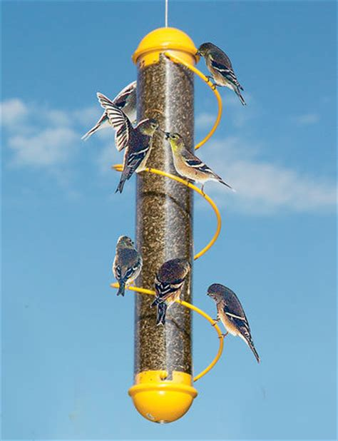 finch bird feeder finch feeder finch feeders finch bird feeders