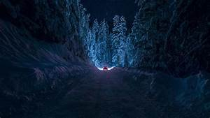 Bulgaria Kyustendil Winter Road Snow Forest Night Car ...