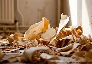 Nichttragende Wand Entfernen Anleitung : tapeten entfernen anleitung und tipps f r schnelles vorgehen wohnen hausxxl wohnen hausxxl ~ Markanthonyermac.com Haus und Dekorationen