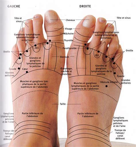 les pieds digitopuncture 2 medecine alternative le pied pieds et r 233 flexologie