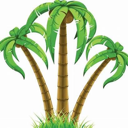 Clipart Palm Royalty Tree Palms Clip Transparent