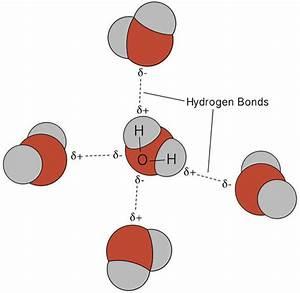 Polarity And Intermolecular Forces