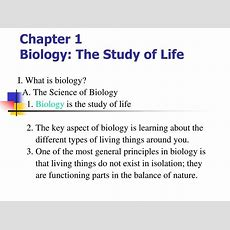 Ppt  Chapter 1 Biology The Study Of Life Powerpoint Presentation Id653130