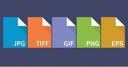 Formats Format Eps Difference Between Tiff Different