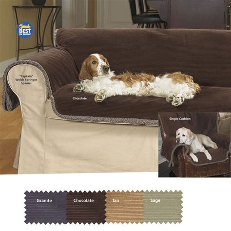 best sofa for dogs 17 best images about canine video products on pinterest