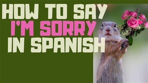 im   spanish lo siento youtube