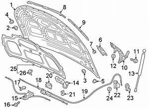 Audi Q5 Hood Hinge  Right - 80a823302c