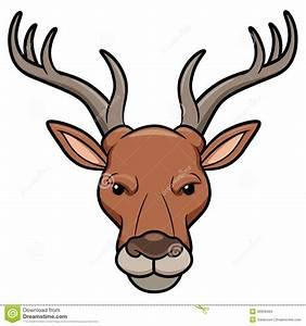 Deer Head Stock Images - Image: 30006494