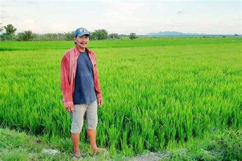 PLDT helps local farmers through digital projects ...