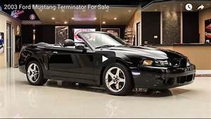 2003 Ford Mustang Terminator For Sale - Muscle Car Fan