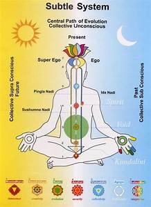 Yoga Life  Chakras Kundalini  U0026 Dna