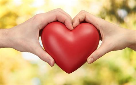 Love wallpaper wallpapers we have about (3,283) wallpapers in (1/110) pages. Red Heart Holding With Boy and Girl Love Wallpaper | HD ...