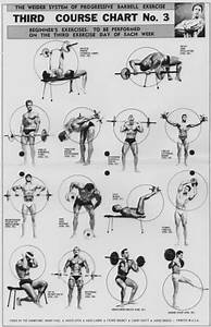Biceps Exercise Chart The Tight Tan Slacks Of Dezso Ban The Weider System