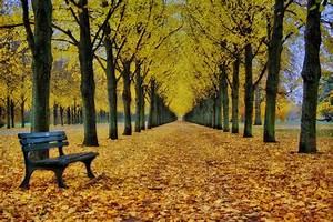 Kostenlose Bilder Herbst : herbst perspektive laatzen ~ Yasmunasinghe.com Haus und Dekorationen