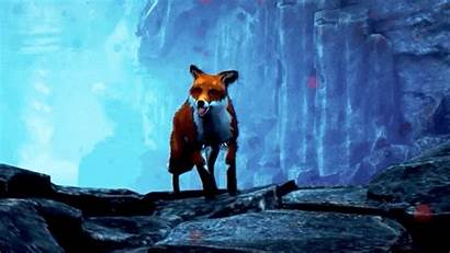 Spirit North Torrent Steam Fox Steampowered App