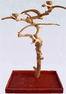 「Parrot play stand」のおすすめアイデア 25 件以上 | Pinterest | 鳥のおもちゃ ...