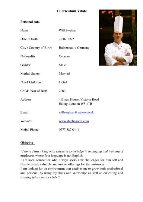 Demi Chef Resume by Demi Chef De Partie Resume Sle Gallery Creawizard