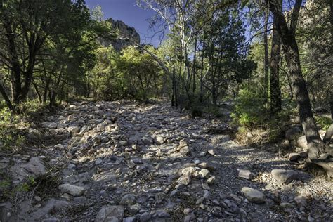 how to build a creek bed how to build dry creek beds for landscape drainage