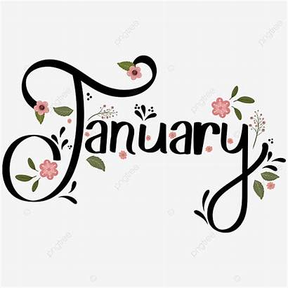 January Month Flowers Decorated Leaves Calendar Pngtree