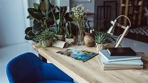 Pflanzen Im Urlaub Bewässern : tricks f r die ferien so berleben ihre pflanzen den urlaub bayern 1 radio ~ Markanthonyermac.com Haus und Dekorationen