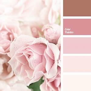 Welche Farbe Passt Zu Altrosa : pastellfarben farbe ideenfarbe ideen ~ Markanthonyermac.com Haus und Dekorationen