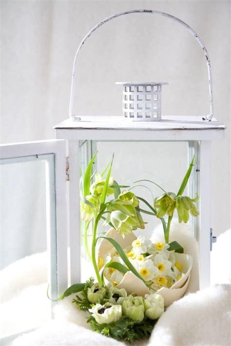 fruehlingsdeko ideen laterne eierschalen blumen fruehling