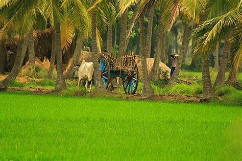 Razole, East Godavari District Wikipedia