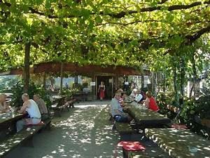 Pergola Mit Wein Bepflanzen : unter der wein pergola bild von haidenhof cermes tripadvisor ~ Eleganceandgraceweddings.com Haus und Dekorationen