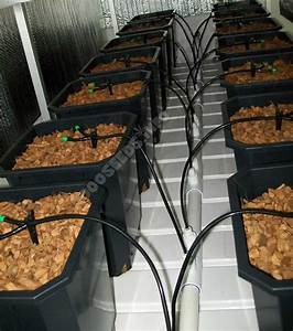 Grow Belüftung Berechnen : wie bew ssere ich cannabis automatisch 1000seeds ~ Themetempest.com Abrechnung