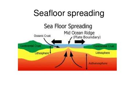 evidence for seafloor spreading comes from seafloor spreading and subduction